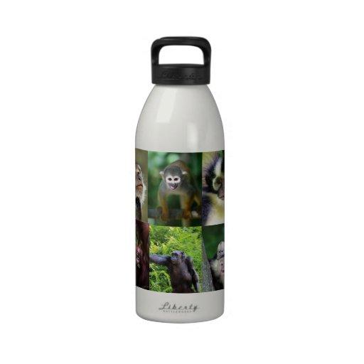 Monkey primate montage water bottles