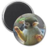 Monkey Refrigerator Magnet