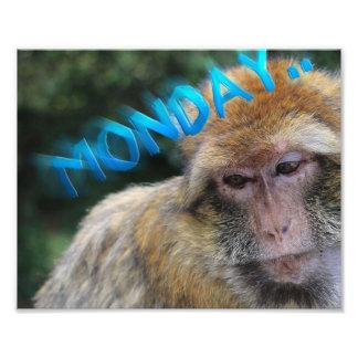 Monkey sad about monday photo print