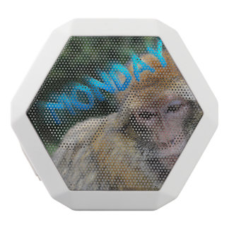 Monkey sad about monday white bluetooth speaker