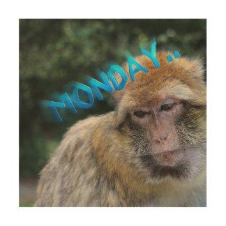 Monkey sad about monday wood wall art