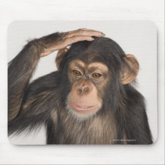 Monkey scratching its head mouse pad