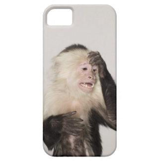 Monkey scratching itself iPhone SE/5/5s case