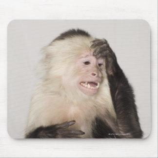 Monkey scratching itself mouse pad