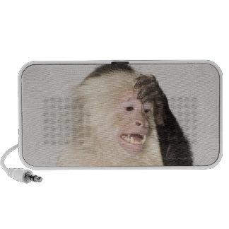 Monkey scratching itself travelling speaker