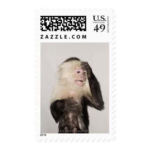 Monkey scratching itself stamps