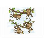 Monkey Shine Postcard