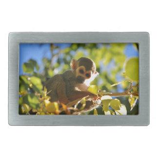 Monkey Shines Rectangular Belt Buckle