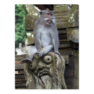 Monkey sitting at a statue in Bali Postcard