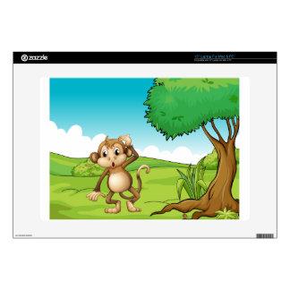 Monkey Skins For Laptops