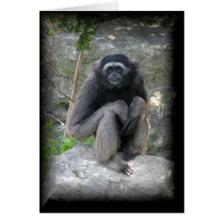 Monkey Stationery Note Card