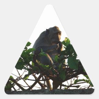 Monkey Triangle Stickers