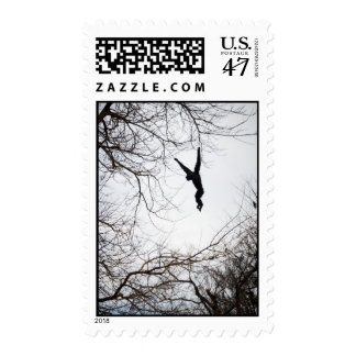 Monkey Swinging Postage Stamp