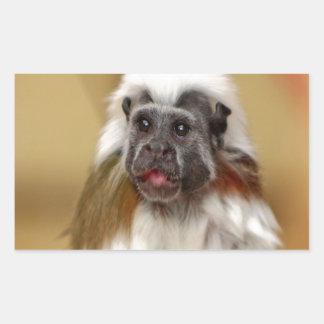 monkey tamarin wait for love rectangular sticker