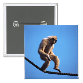 monkey walking on rope button