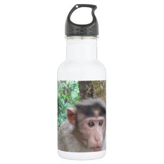 Monkey Water Bottle