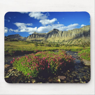 Monkeyflowers at Logan Pass in Glacier National Mouse Pad