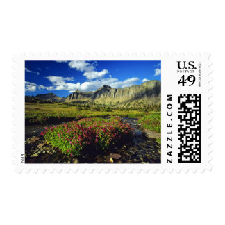 Monkeyflowers at Logan Pass in Glacier National Postage