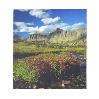 Monkeyflowers at Logan Pass in Glacier National Scratch Pads