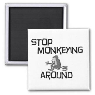 Monkeying around  Magnet