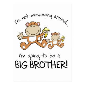 monkeying around postcard