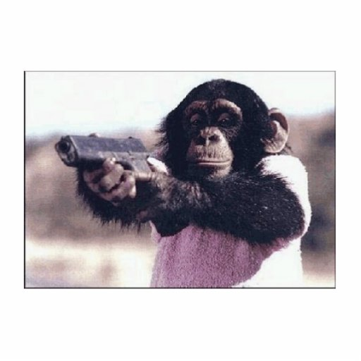 Monkeypistolnewone Photo Cut Out