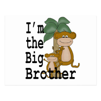 Monkeys Big Brother Postcard