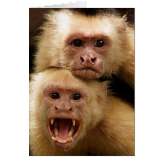 Monkeys! Card