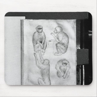 Monkeys, from The Vallardi Album Mouse Pad