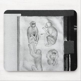 Monkeys, from The Vallardi Album Mouse Pad