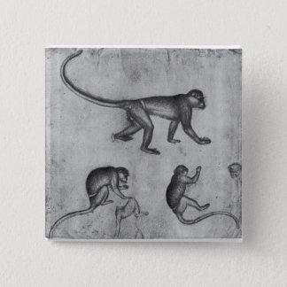 Monkeys, from The Vallardi Album Pinback Button