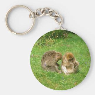 Monkeys Grooming Keychain
