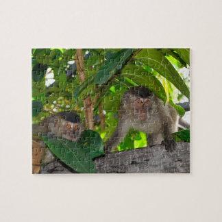 Monkeys in Rainforest of Borneo Jigsaw Puzzles