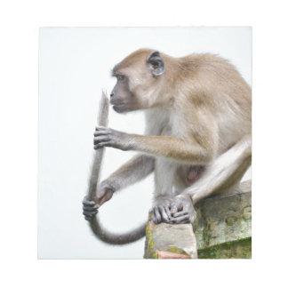 monkeys in the jungle memo notepad