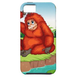 Monkeys iPhone SE/5/5s Case