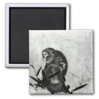 Monkeys Magnet