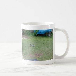 Monkeys Classic White Coffee Mug