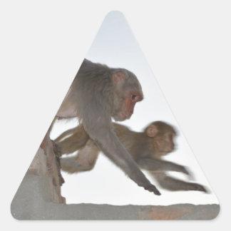 Monkeys On the Run Triangle Sticker
