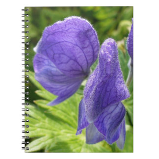 Monkshood, Aconitum maximum Note Books