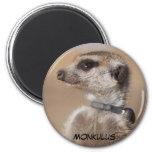 Monkulus Magnet