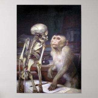 Mono antes del esqueleto póster
