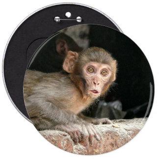 Mono asustado con el botón grande de los ojos pin redondo de 6 pulgadas