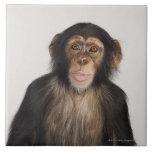 Mono Azulejo Cuadrado Grande