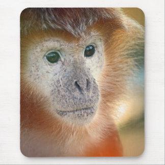 Mono coloreado melaza alfombrilla de ratón
