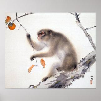 Mono con los caquis póster