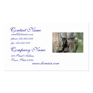 Mono copetudo lindo del capuchón plantillas de tarjetas de visita