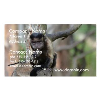 Mono copetudo lindo del capuchón plantillas de tarjeta de negocio