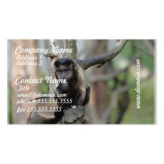 Mono copetudo lindo del capuchón tarjetas de visita
