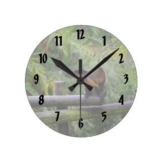 mono dado vuelta lejos en la verja reloj redondo mediano
