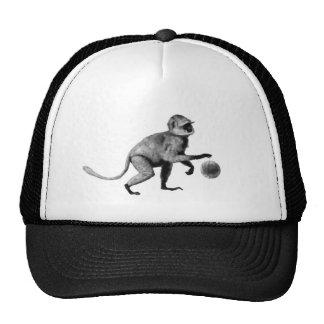 Mono de araña del baloncesto gorro